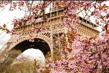 I <3 PARIS / Je t'aime Paris! Okay, more than anything the Eiffel Tower. But saying I love Paris sounds better. :)
