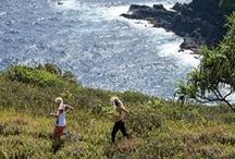 Roxy Adventure / #roxy #fitness #adventure #contest / by Lainie C.