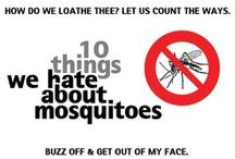 Mosquito Bites / Only female mosquitoes bite because they are after a protein found in blood to develop their eggs.  When not after your blood, they (like their male counterparts) feed off plant nectar.  Some of the best remedies for treating mosquito bites are closer to home than you might realize.