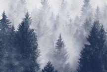 ♡ winter.
