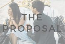 12+ Months: The Proposal / Ideas and inspiration for the proposal