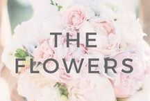 6+ Months: The Flowers / Ideas and inspiration to help you when deciding on your wedding flowers