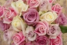 Weddings: Flowers & Bouqets / by Christina Davison
