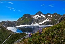 Sitka Picture Perfect Photo Contests