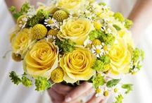 Weddings: Shades of Yellow / by Christina Davison