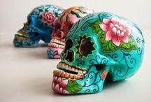 skulls / skulls and skull related stuff. / by charley mccoy