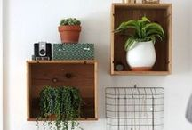home inspiration - plants