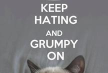 Grumpy Cat / by Caitlyn Haake