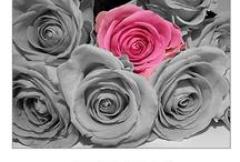 Um toque rosa