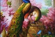 Pavões - Peacocks / Eu acho lindos!!!