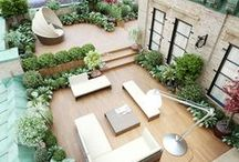 Airproof groen / Bloemen, planten, tuinen, hooikoortsvriendelijke beplanting en ideetjes voor je balkon.