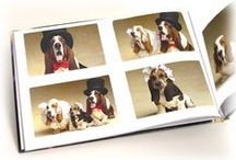 Show Off Your Pets / Great ways to show off your pets with photo products