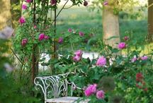 Inviting garden spaces / Secret gardens and visions of my own