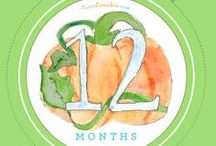 PEA TO PUMPKIN: A BABY JOURNAL / Out now at Barnes & Noble, Amazon and Babies 'R Us.