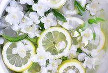 Musc Pétillant / Une fragrance à la fois douce et pétillante, construite autour d'un musc blanc délicat, rafraîchit par des notes de citron et de mandarine.