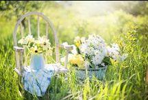 Pâquerette / Telle une promenade dans les champs, retrouvez l'odeur fraîche d'un vaste pré vert, fleuri de pâquerettes associant des notes douces et poudrées, légèrement orangées de Miel de Genet.