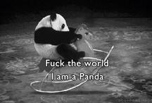 Pandas / by Inês Barreto