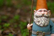 Gnome Cuties