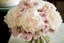 Wedding Flower / ブーケを探すならザ・ウエディングにお任せ。ショップのエリアや花の種類、デザイン、色などから探せるのであなたにぴったりのブーケがきっと見つかるはず。