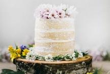 cake / by Aliza Sherman