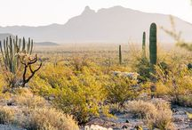 Things to do in Az
