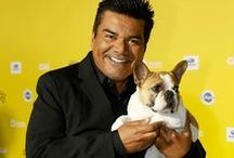 World Dog Awards 2015 / Vote Now for your favorite four-legged friends in the 2015 World Dog Awards: worlddogawards.com
