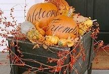 Seasons - Autumn / by Phillis Mullin