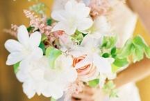 Dream Wedding / Someday <3