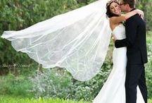 Weddings / by Hockley Valley Resort HVR