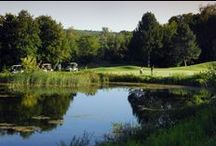 Things To Do / Things to do and see while in the area. / by Hockley Valley Resort HVR
