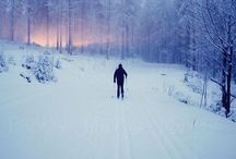 Cross Country Skiing / by Amy Bradstreet