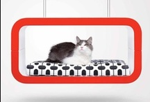 Cat Design Furniture / Beautiful Cat Design Furniture