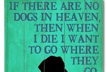 Dog Quotes / A collection of our favorite dog quotes and dog wisdom sure to inspire an even happier relationship between you and your best friend!