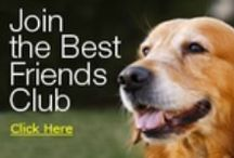 Join The Best Friends Club! / Join Bil-Jac's Best Friend Club and you'll receive an exclusive newsletter filled with #PetTrainingTips, members-only discounts, inspiring stories, fun facts and more. Visit Bil-Jac at www.bil-jac.com/bestfriendsclub.php