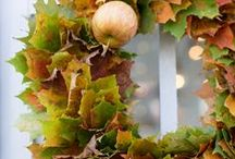 The Four Seasons:  Autumn / A collection of images celebrating the season of harvest...