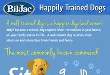 Doggy Tips & Tricks / Simple ideas to improve and fulfill your best friend's every day life.