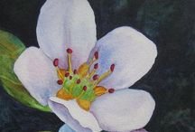Flower art / by Tereasa Cox