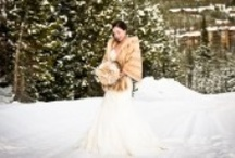 Winter Weddings / Winter Weddings, a magical combination!  Winter is a beautiful time of the year for a wedding!