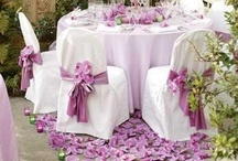 Wedding Chairs / Chair decorations are like adding the cherry and whip cream to the top of a sundae!  So many beautiful ideas...