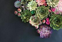 LUSH. / Florals & greenery <3 / by Raina Lad