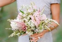 Wedding - bouquet ideas / by Christina B. D.
