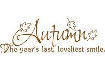 Seasons | Autumn / I love the colours in fall