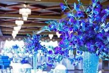Blue Weddings Ideas