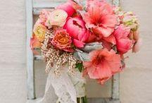 Wedding Ideas / by Jess Deegan