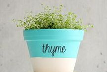 For the Home - Garden Planning