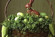 Funny Bunny / by Becky Campbell