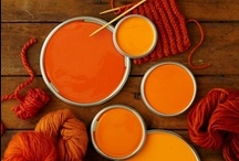 Pumpkin: Winter's Hottest Colour / Warm up your winter wardrobe with this gorgeous shade of red-orange. / by EziBuy