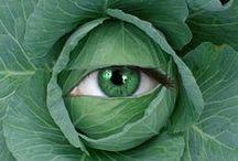 Silmiä Eyes