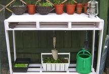 Greenhouse/Yard Combination / by Emily Niemann