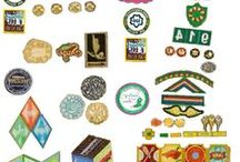Girl Scout Patches and Wearables / Girl Scout patch programs and tee shirts, etc. / by Donna Hamilton